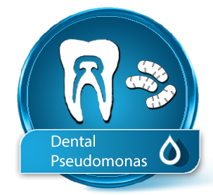 Wassertest Dental-Pseudomonas